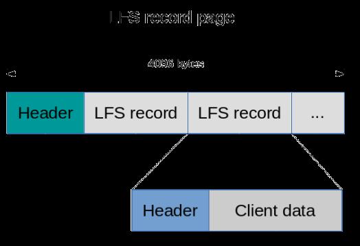 lfs-record-page